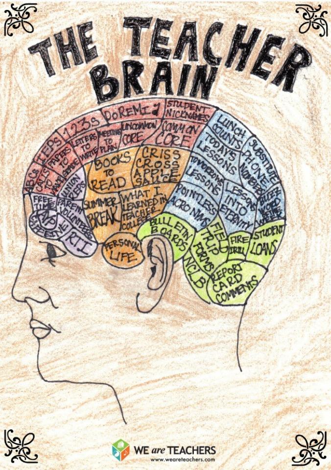 The Teacher Brain